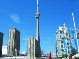 Toronto cn tower and downtown condos